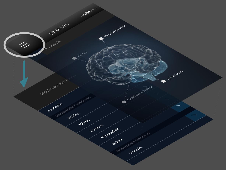 dasgehirn.info 3D-Gehirn